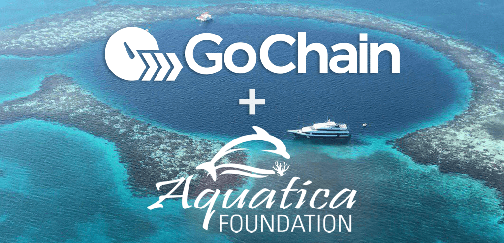 Aquatica Foundation, an Ocean Conservation Charity, Joins GoChain's Validator Network