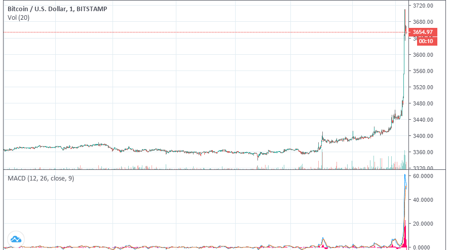 Newsflash: Bitcoin Price Smashes Past $3,700, How High Will it Go?