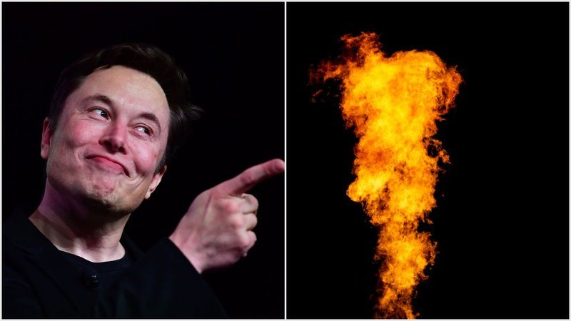 New Yorkers Are Safer After State Senate Bans Elon Musk's Flamethrower