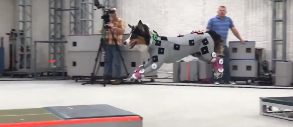 This Last of Us Part 2 Motion-Capture Dog Will Haunt Gamers