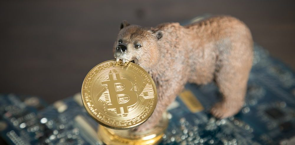 Crypto Market Up $6 Billion in 4 Days: Is Bitcoin King During the Bear Market?
